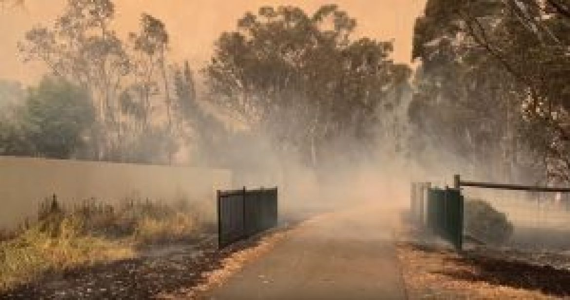 South Australian bushfires